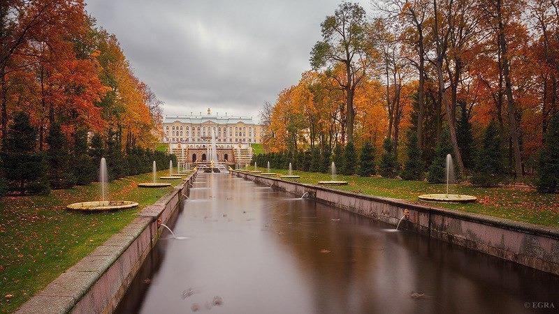 Nước Nga đã vào thu với sắc vàng đẹp say đắm lòng người, xách vali lên và đi du học thôi! - Ảnh 11.