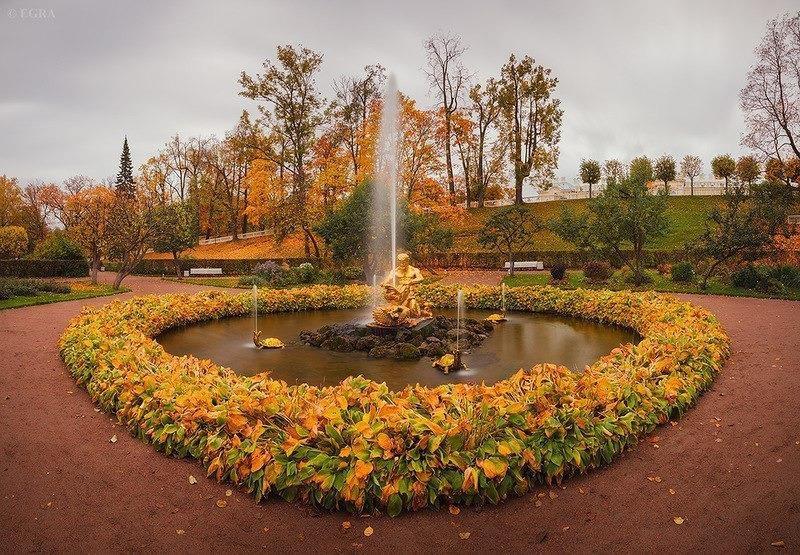 Nước Nga đã vào thu với sắc vàng đẹp say đắm lòng người, xách vali lên và đi du học thôi! - Ảnh 12.