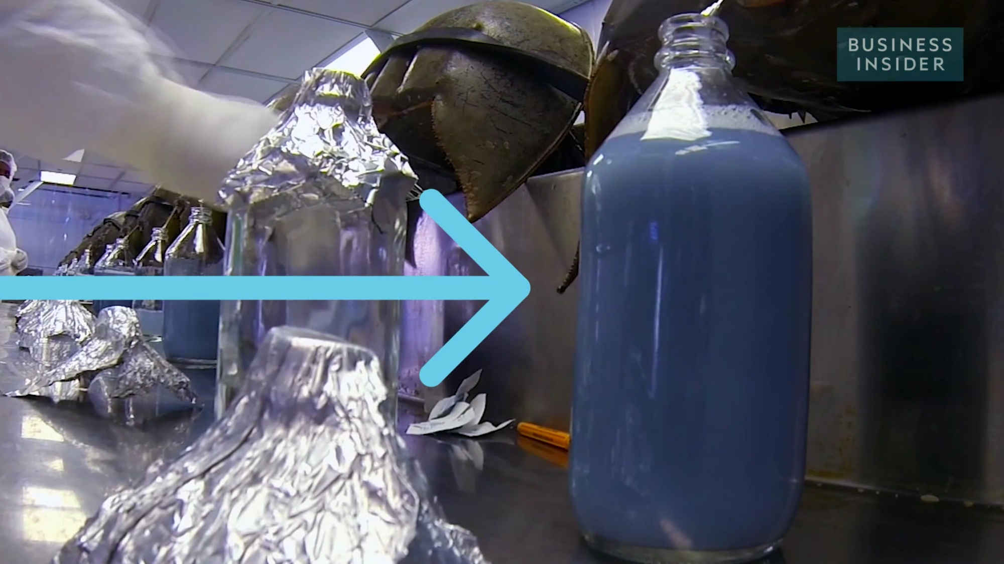 Bạn có tin cái bình nước màu xanh này có giá tới... 300 triệu đồng/lít - Ảnh 1.