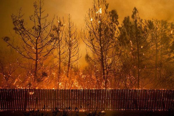 Cháy rừng tại California: Khu nhà giàu thất thủ, hàng loạt dinh thự triệu đô của đại gia và celeb bị thiêu trụi - Ảnh 5.