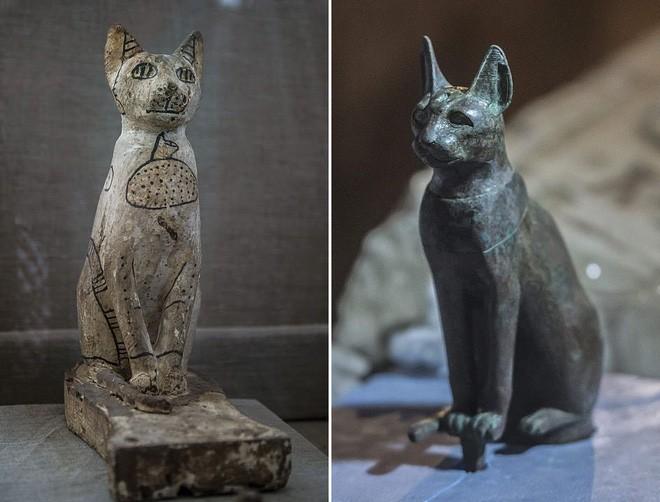 Xác ướp bọ hung và mèo được tìm thấy bên trong ngôi mộ Ai Cập cổ.6