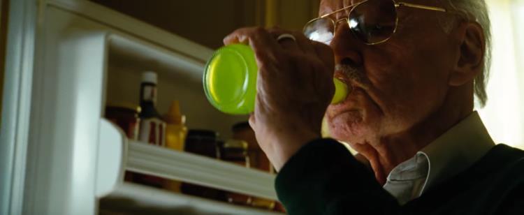 Nhìn lại gia tài vai diễn cameo trên màn ảnh rộng đầy thú vị của thiên tài Stan Lee - Ảnh 10.