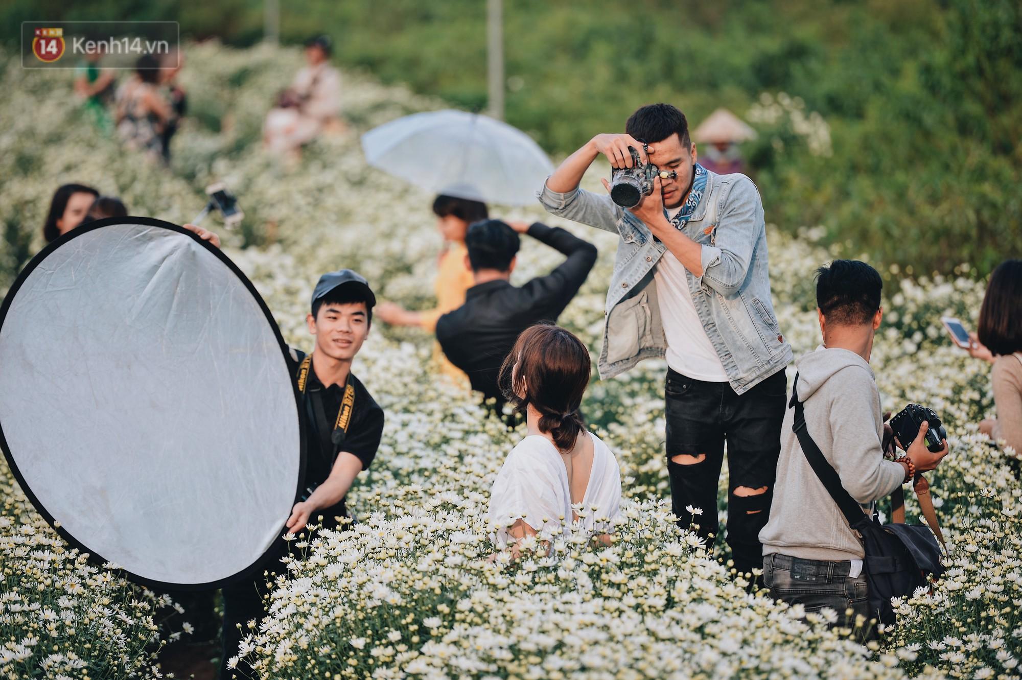 Vườn cúc hoạ mi ở Hà Nội thất thủ cuối tuần: 1 mét vuông có chục nhiếp ảnh gia và mẫu - Ảnh 5.