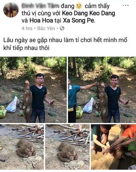 Xác định nam thanh niên giết khỉ dã man rồi đăng ảnh lên Facebook - Ảnh 1.