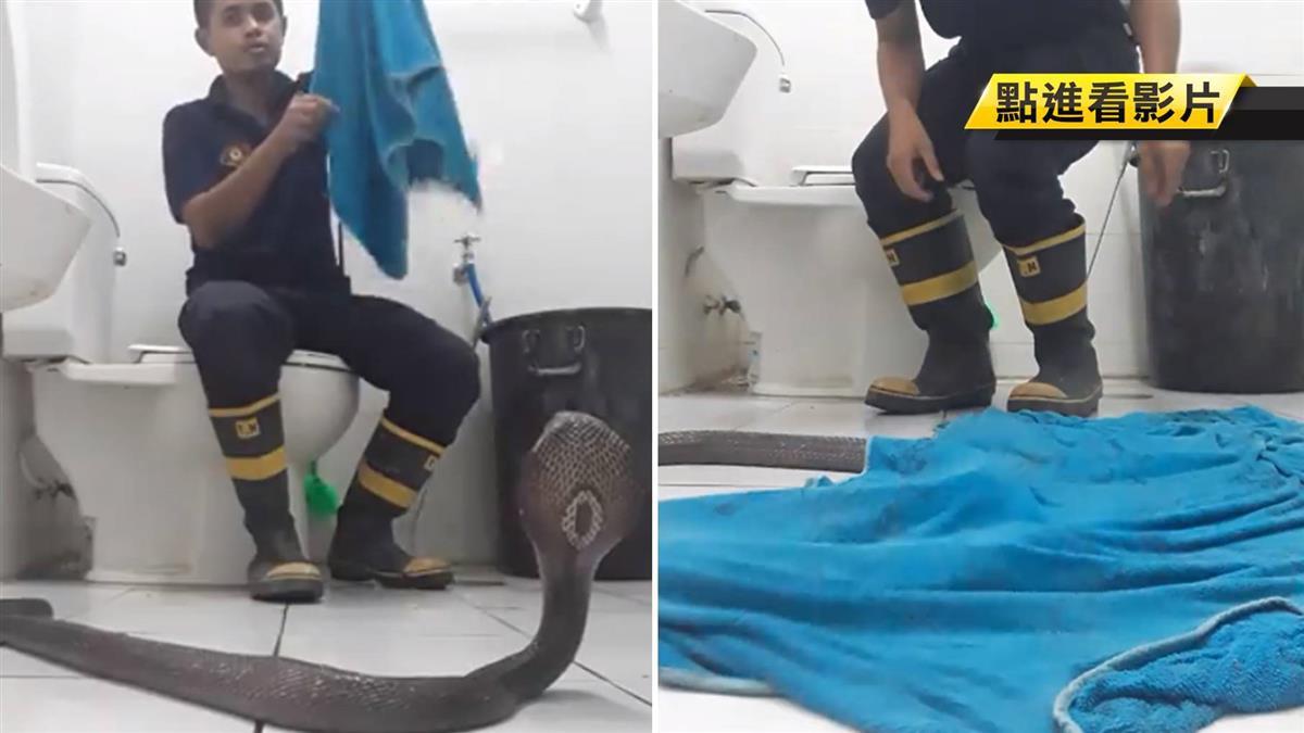 Góc hữu ích: Lính cứu hỏa Thái Lan hướng dẫn cách xử lý khi gặp rắn hổ mang ở trong nhà chỉ với 1 chiếc khăn tắm - Ảnh 2.