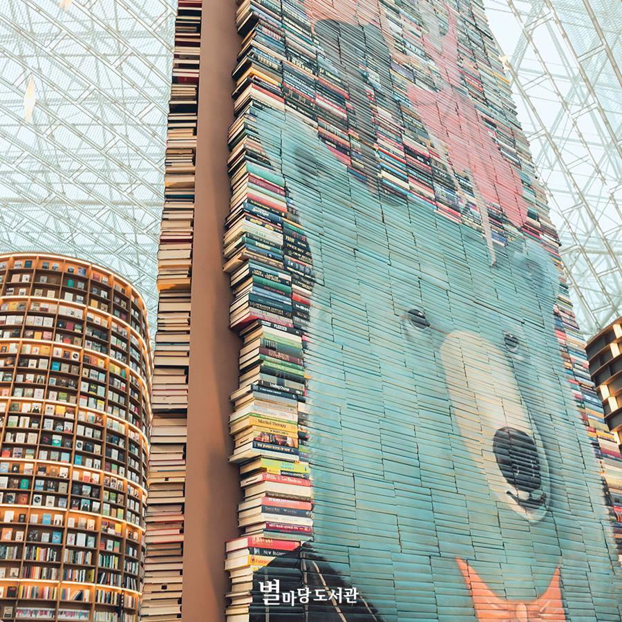 Thư viện khổng lồ nằm ở tận Seoul nhưng bạn trẻ Việt Nam nào đến đây cũng phải check-in cho bằng được! - Ảnh 22.