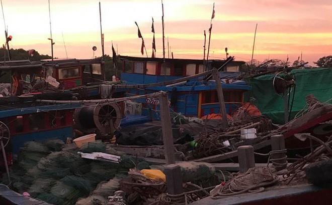 Hơn 4.000 người ở huyện Cần Giờ sẽ được sơ tán để tránh bão số 9 - Ảnh 1.