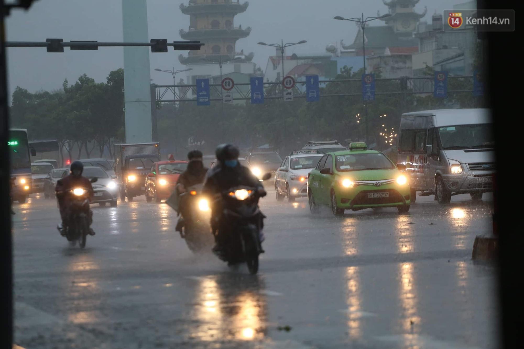 Cây xanh ngã đổ trong mưa bão ở Sài Gòn, hai mẹ con nữ nhân viên ngân hàng suýt chết - Ảnh 2.