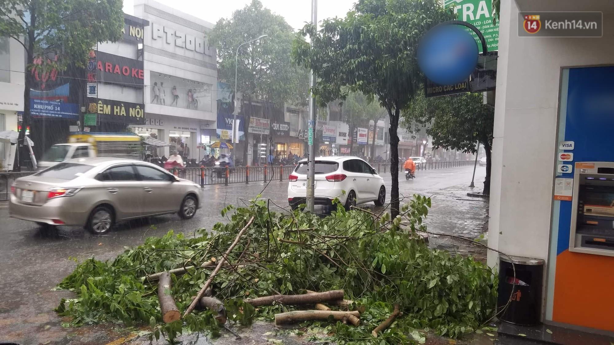 Cây xanh ngã đổ trong mưa bão ở Sài Gòn, hai mẹ con nữ nhân viên ngân hàng suýt chết - Ảnh 1.