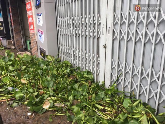 Sài Gòn ngập nặng nhiều tuyến đường sau bão số 9, dân công sở chật vật lội nước đi làm sáng đầu tuần - Ảnh 18.