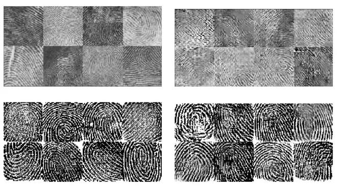 Các nhà khoa học tạo ra được vân tay vạn năng, có khả năng mở khóa bảo mật của smartphone hiện tại - Ảnh 1.