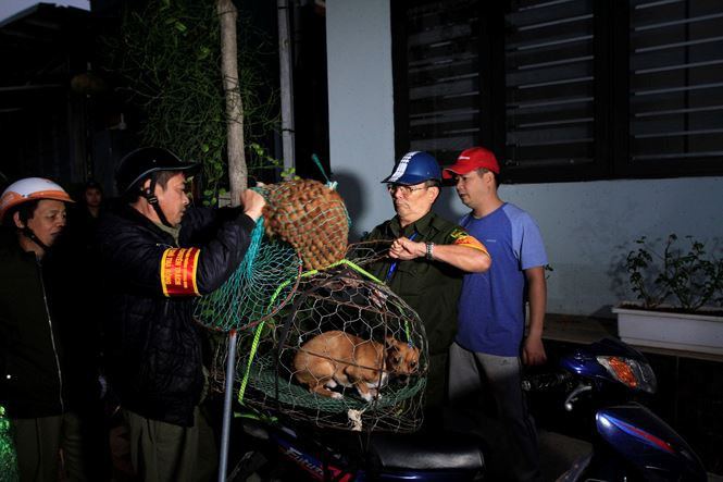 Tờ mờ sáng, theo chân đội bắt chó thả rông ở Hà Nội - Ảnh 9.