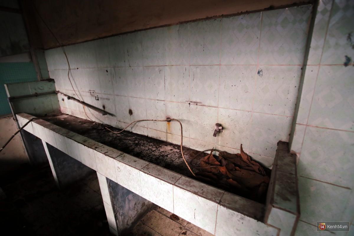 Cảnh hoang tàn bên trong ngôi trường tiểu học bị bỏ hoang hơn 3 năm ở Sài Gòn - Ảnh 3.