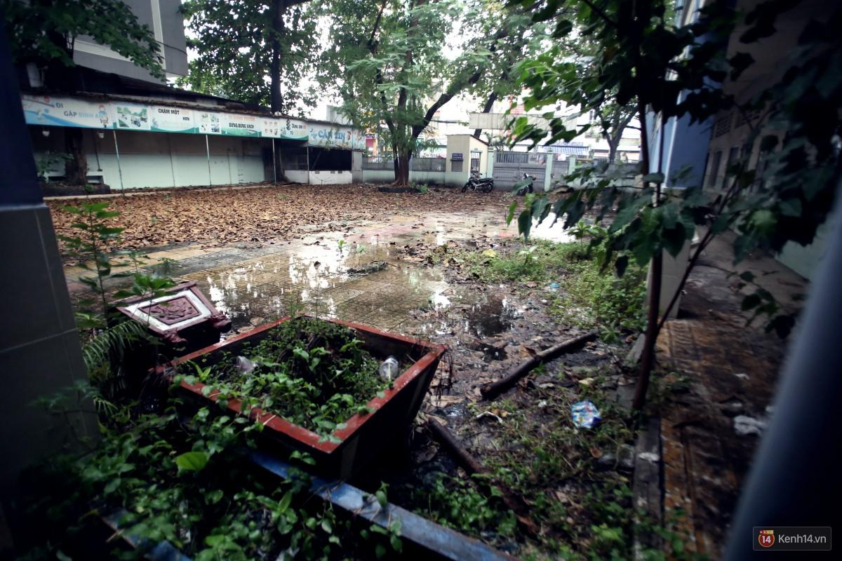 Cảnh hoang tàn bên trong ngôi trường tiểu học bị bỏ hoang hơn 3 năm ở Sài Gòn - Ảnh 4.