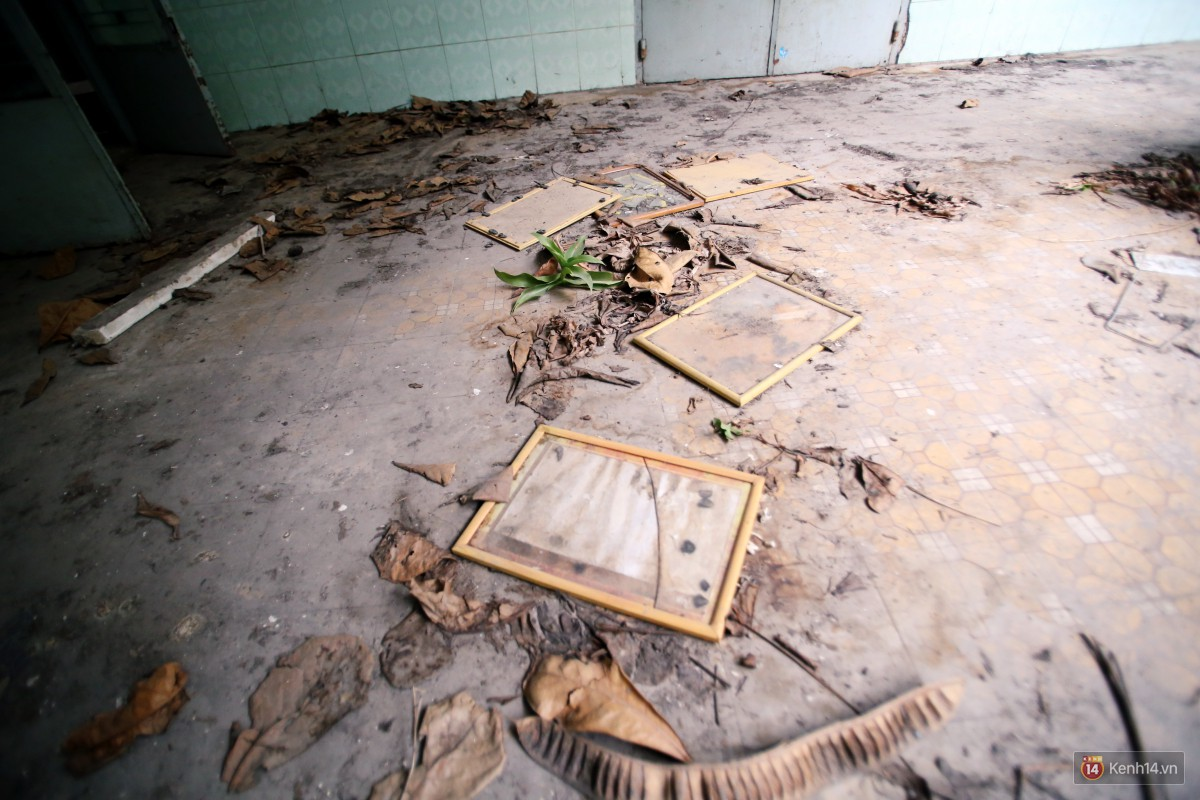 Cảnh hoang tàn bên trong ngôi trường tiểu học bị bỏ hoang hơn 3 năm ở Sài Gòn - Ảnh 17.