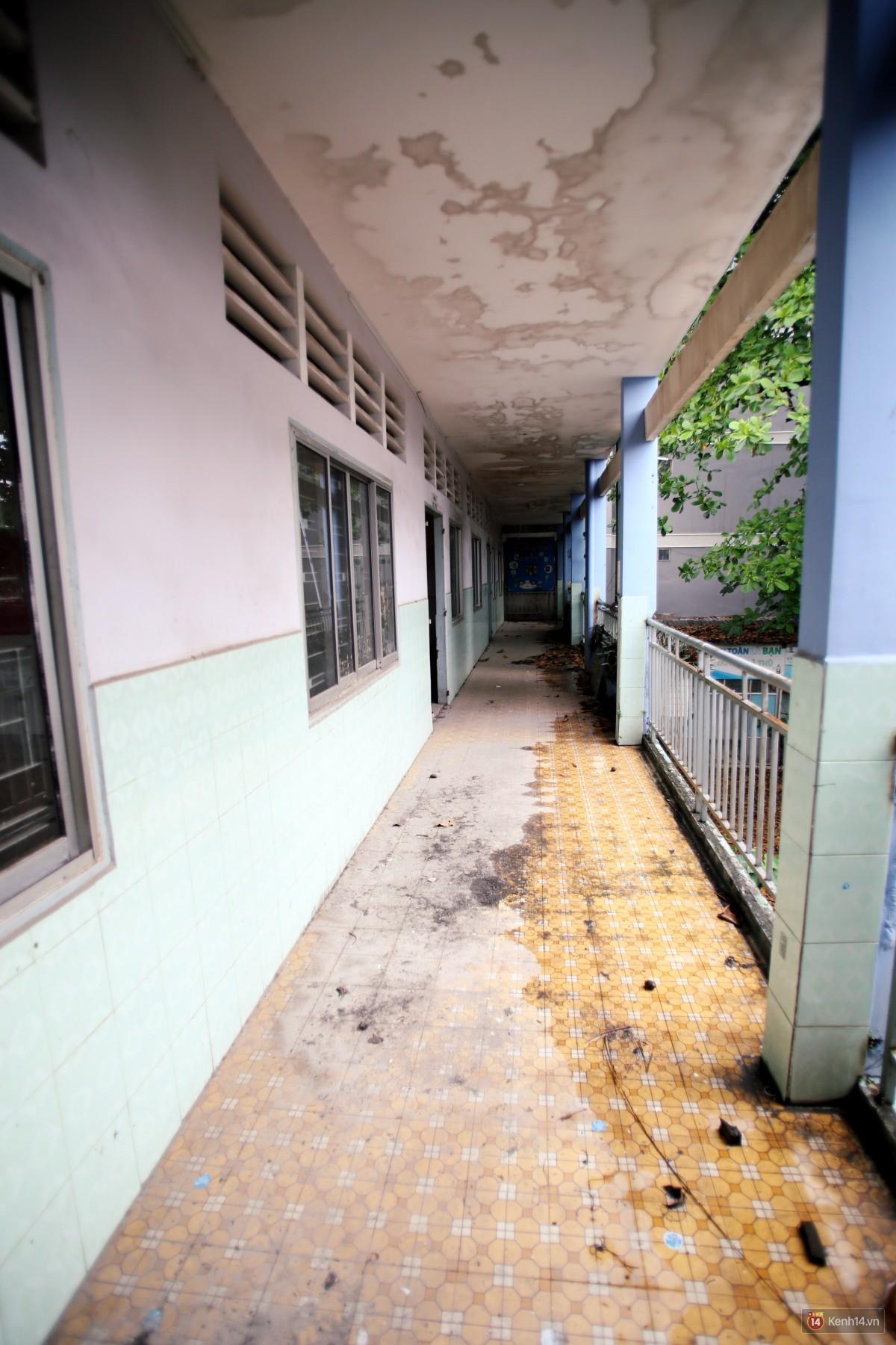 Cảnh hoang tàn bên trong ngôi trường tiểu học bị bỏ hoang hơn 3 năm ở Sài Gòn - Ảnh 7.