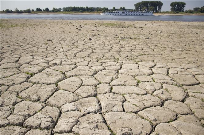 Năm 2018 đang trở thành năm nóng thứ 4 trong lịch sử - Ảnh 1.