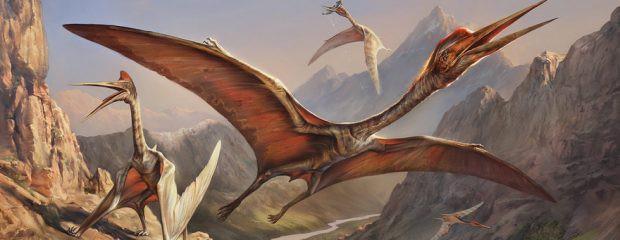 Rồng biết bay và phun lửa: Truyền thuyết hay loài vật có thật? -  Quetzlcoatlus – sinh vật biết bay to lớn nhất lịch sử