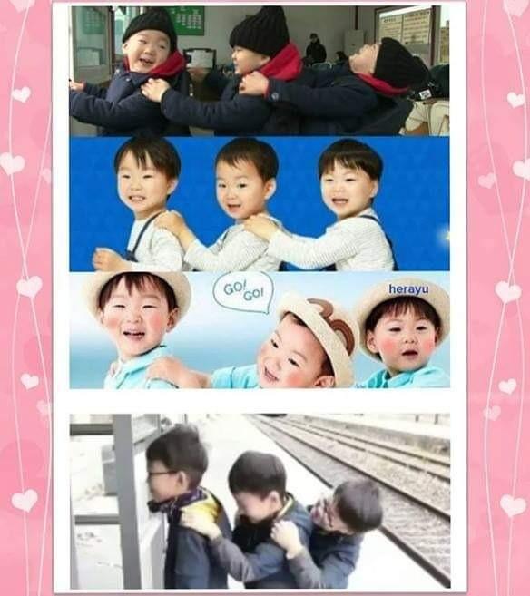 Bộ ba thiên thần nhà Song Il Gook cao lớn phổng phao, tái xuất trên show thực tế - Ảnh 3.