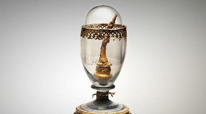 Ngón tay giữa nổi tiếng nhất, được lưu giữ như thánh tích trong bảo tàng Italy thuộc về... Galileo Galilei - Ảnh 2.