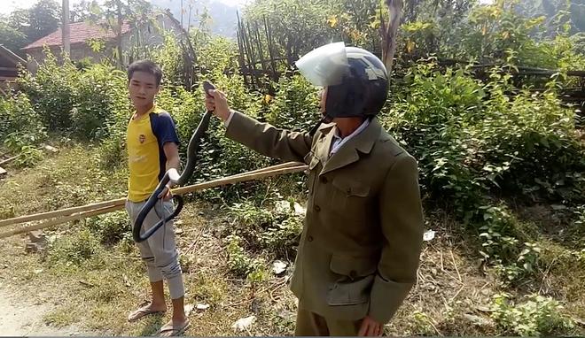 Gặp rắn độc dài 2m bò ngang quốc lộ, người đàn ông vứt xe máy xuống bắt bằng tay - Ảnh 4.