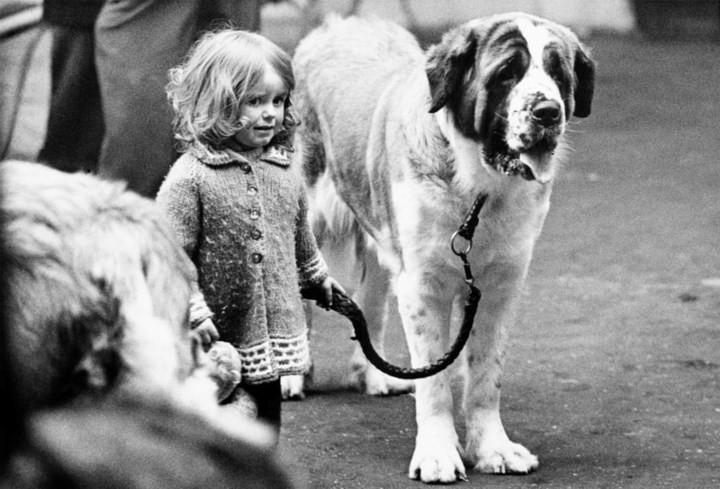 Những bức ảnh đen trắng hiếm có về Dog Show ở Anh giữa thế kỷ 20 - Ảnh 1.