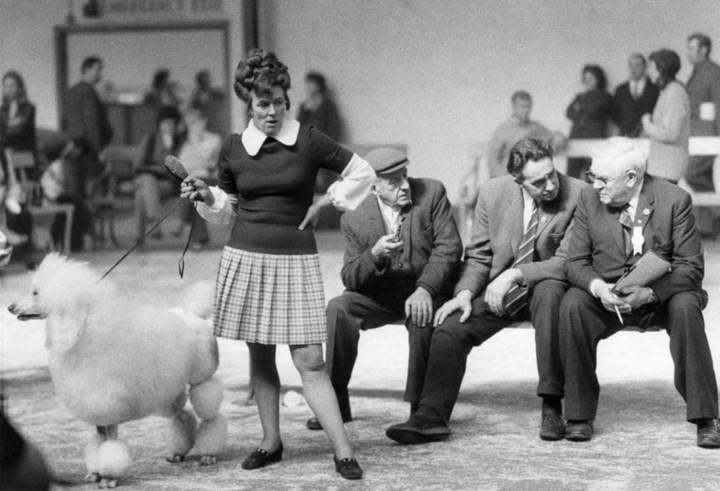 Những bức ảnh đen trắng hiếm có về Dog Show ở Anh giữa thế kỷ 20 - Ảnh 5.