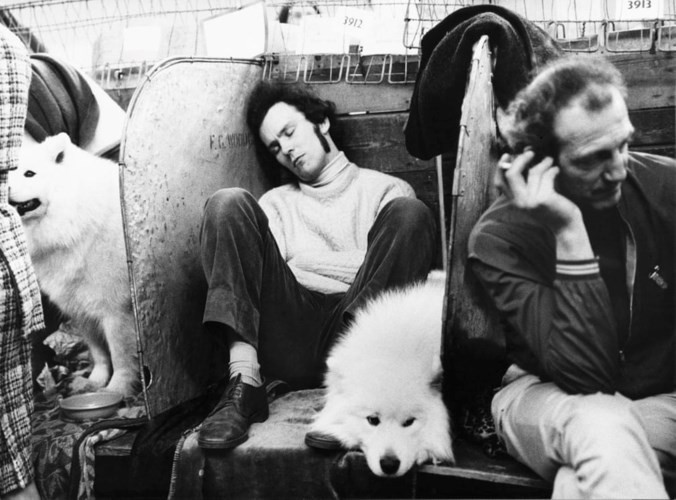 Những bức ảnh đen trắng hiếm có về Dog Show ở Anh giữa thế kỷ 20 - Ảnh 10.