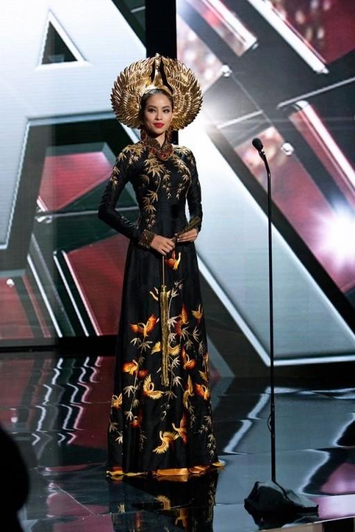 Trước Bánh Mì của H'Hen Niê, Việt Nam từng ghi dấu ấn tại Miss Universe bởi loạt quốc phục độc đáo này - Ảnh 5.