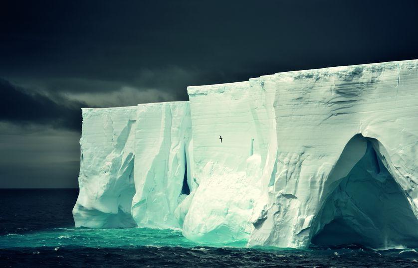 Những bức ảnh chứng minh rằng thiên nhiên hoang dã và toàn vẹn vẫn đang tồn tại trên Trái đất này - Ảnh 4.
