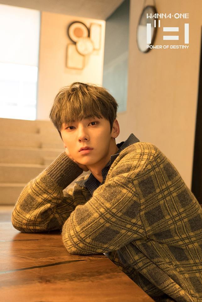 Mừng Minhyun trở về từ Wanna One, NUEST rục rịch chuẩn bị cho solo concert đầu tiên sau 7 năm hoạt động - Ảnh 3.