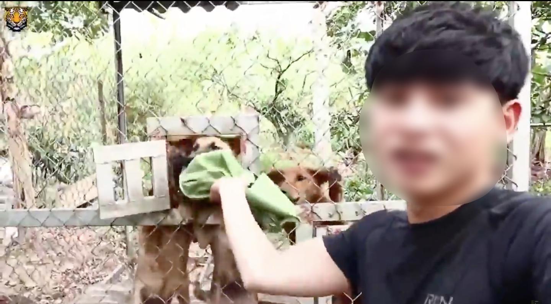Cộng đồng mạng kêu gọi report kênh youtube của thanh niên lấy xác mèo nướng thịt, ăn xong ném cho chó săn đánh chén - Ảnh 3.