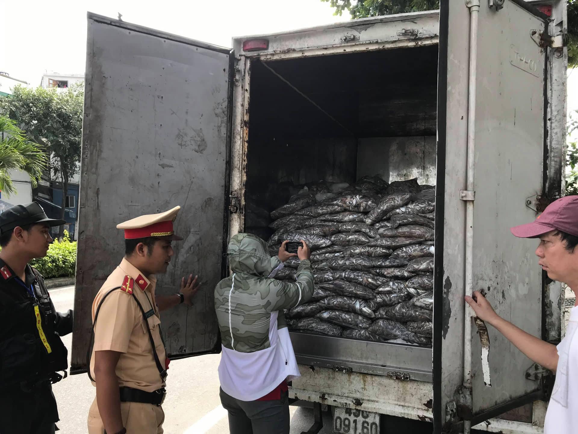 Bắt xe tải vận chuyển 3,5 tấn cá thối chảy nước xuống đường phố Đà Nẵng - Ảnh 2.