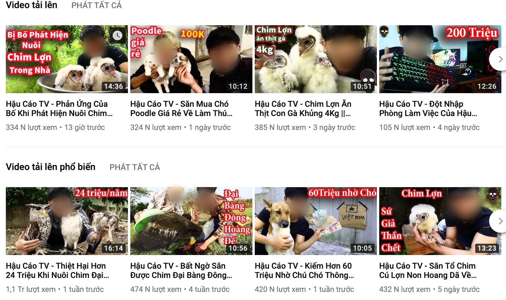 Cộng đồng mạng kêu gọi report kênh youtube của thanh niên lấy xác mèo nướng thịt, ăn xong ném cho chó săn đánh chén - Ảnh 1.
