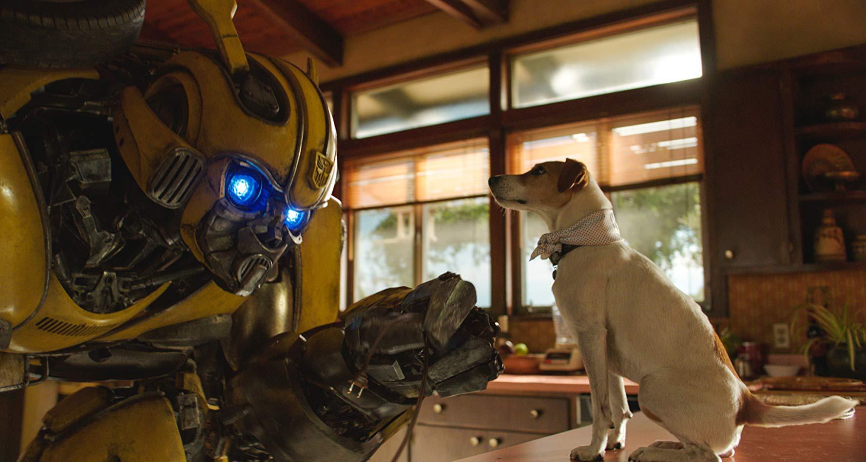 4 điều khiến chú ong nghệ Bumblebee hoàn toàn khác biệt với mọi phần Transformers cũ - Ảnh 5.