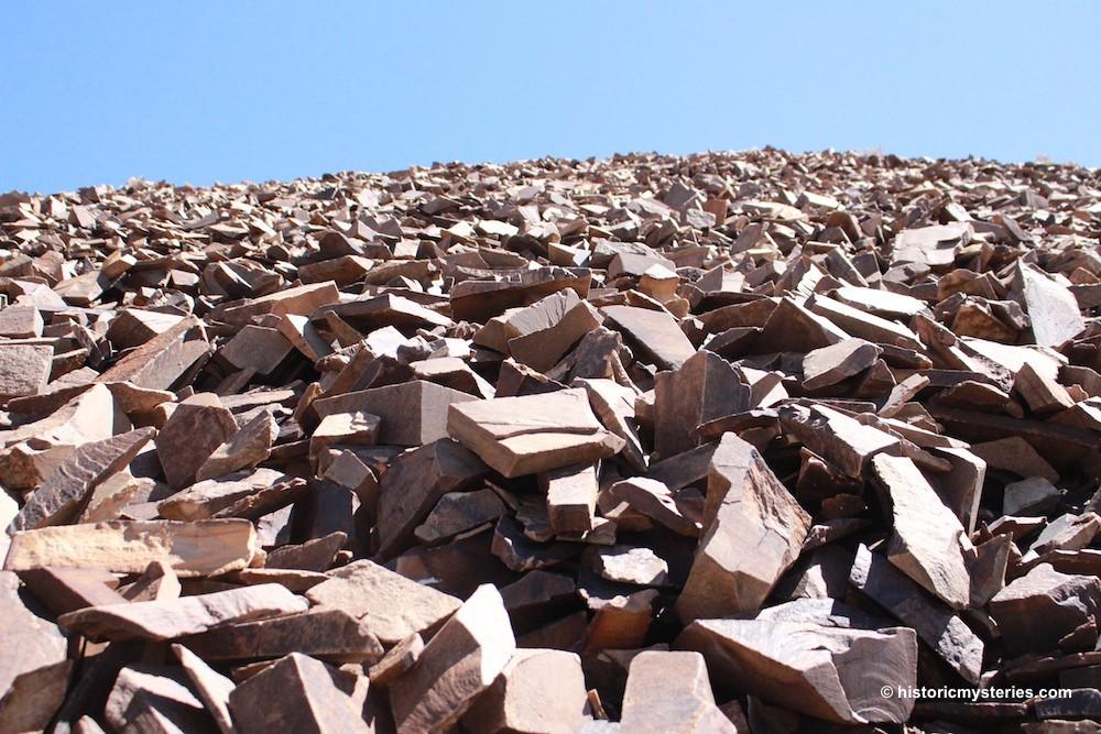Kỳ lạ cây cổ thụ 5.000 năm, nhiều tuổi hơn Kim tự tháp Ai Cập, vẫn sống khỏe - Ảnh 3.