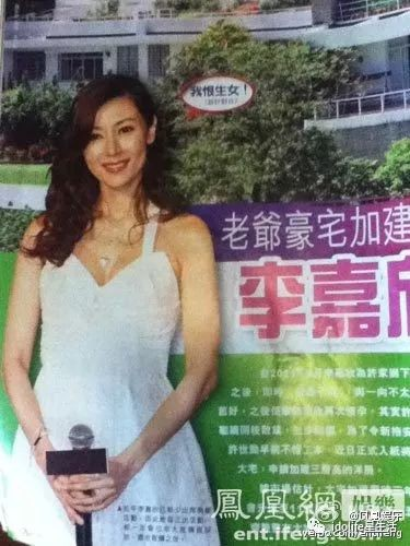 Vì sao Hoa hậu Hong Kong Lý Gia Hân và đại gia không được hưởng 1 đồng nào từ tài sản trăm ngàn tỷ của bố chồng? - Ảnh 14.