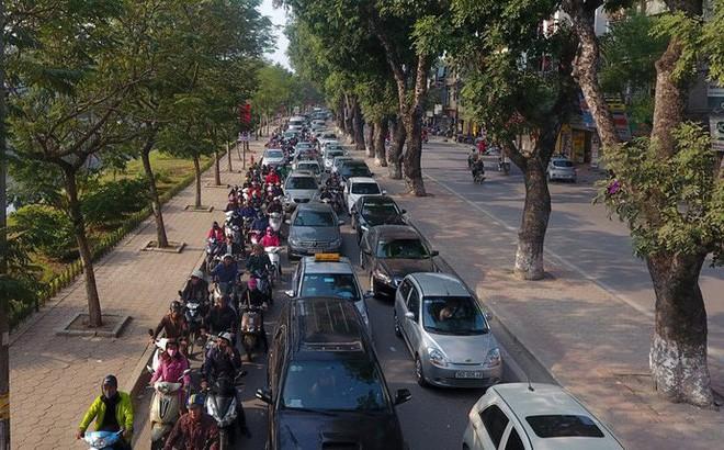 Hà Nội chuẩn bị chặt, dịch chuyển hơn 400 cây xanh trên đường Láng - Ảnh 1.