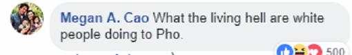 Hai biến tấu kỳ dị của món phở Việt Nam khiến dân mạng trong nước và quốc tế khóc thét - Ảnh 5.