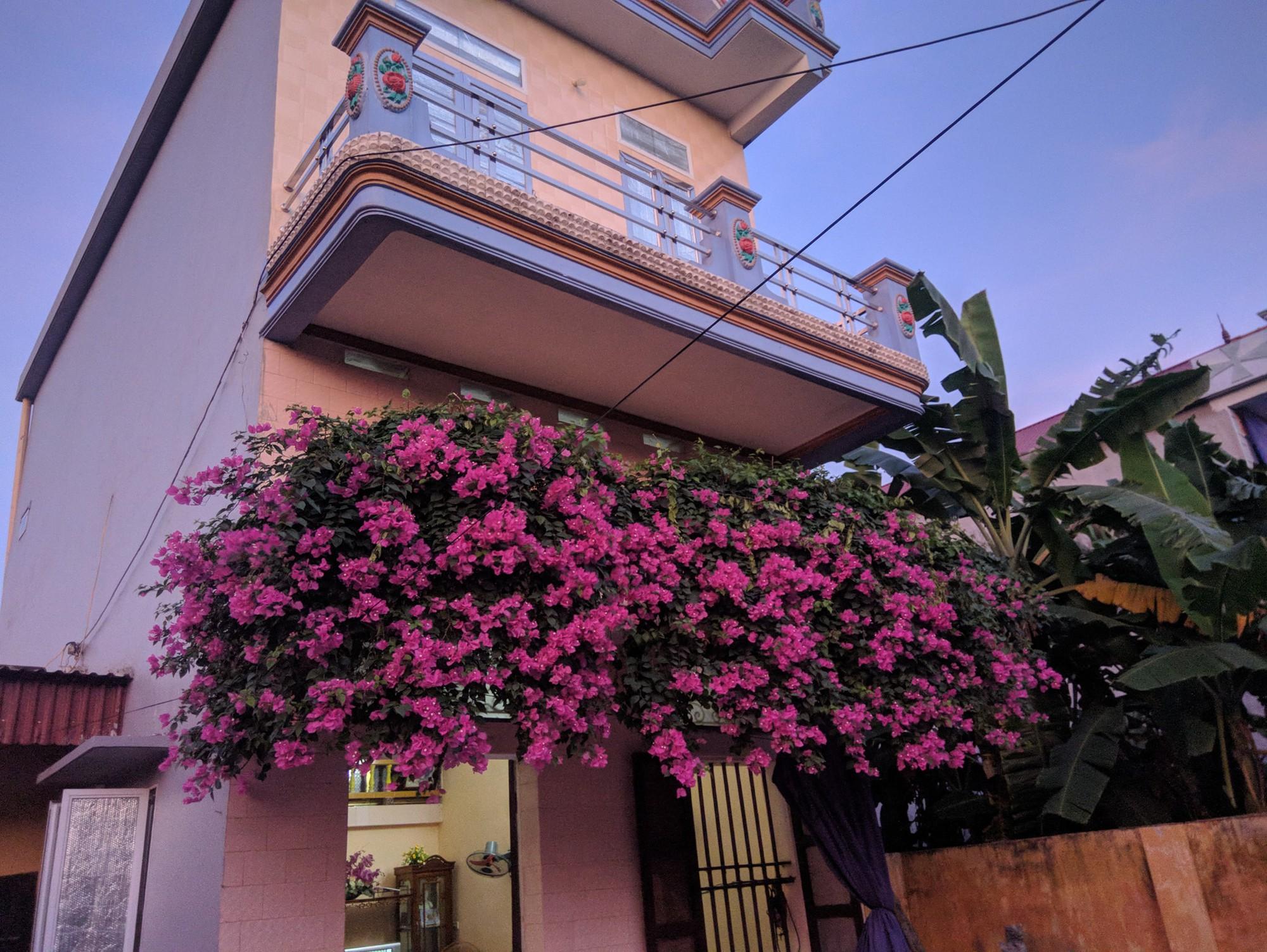 Thanh niên khoe căn nhà xinh có giàn hoa giấy 20 năm tuổi đẹp nức lòng cư dân mạng - Ảnh 3.