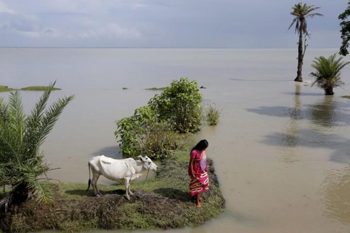 Cuộc sống trên hòn đảo đang chìm dần của Ấn Độ - Ảnh 5.