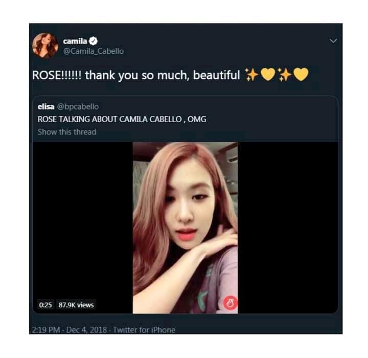 Hành động này của Camila Cabello khiến fan mong chờ về màn kết hợp với Joy (Red Velvet) và Rosé (BLACKPINK) - Ảnh 2.