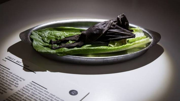 Thuỵ Điển thành lập bảo tàng: Những loại thức ăn kinh dị nhất thế giới, có tới 5 món quen ở Việt Nam được trưng bày - Ảnh 2.