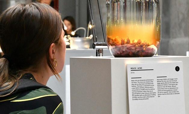 Thuỵ Điển thành lập bảo tàng: Những loại thức ăn kinh dị nhất thế giới, có tới 5 món quen ở Việt Nam được trưng bày - Ảnh 4.