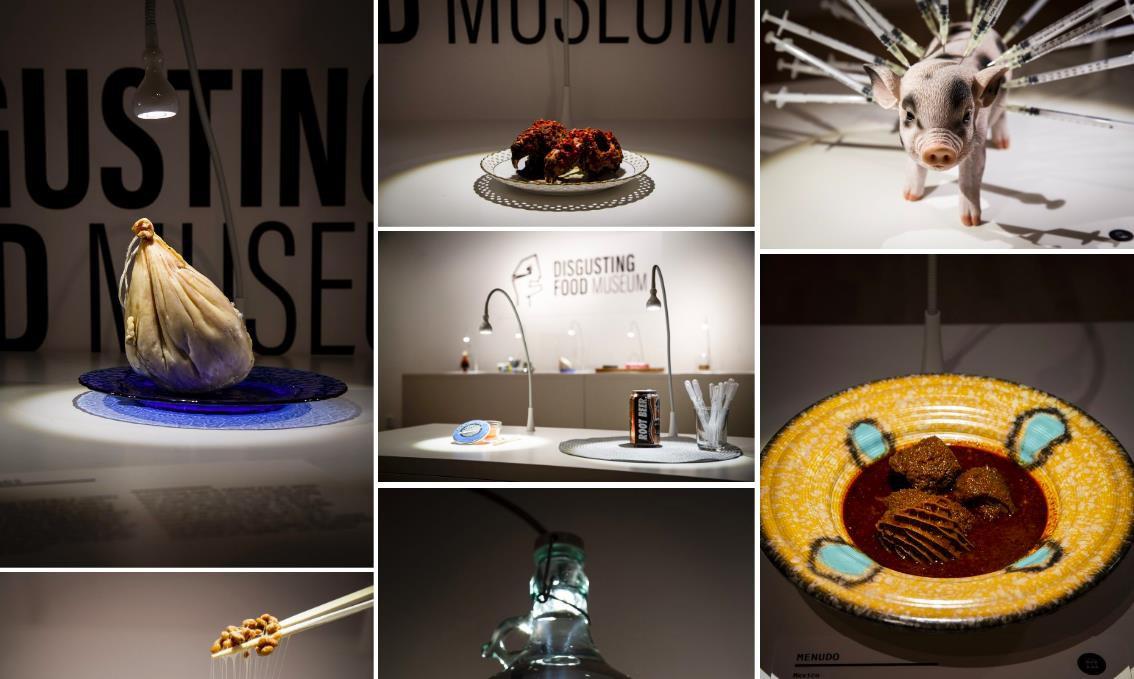 Thuỵ Điển thành lập bảo tàng: Những loại thức ăn kinh dị nhất thế giới, có tới 5 món quen ở Việt Nam được trưng bày - Ảnh 1.