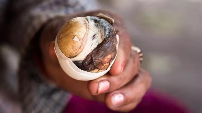 Thuỵ Điển thành lập bảo tàng: Những loại thức ăn kinh dị nhất thế giới, có tới 5 món quen ở Việt Nam được trưng bày - Ảnh 12.