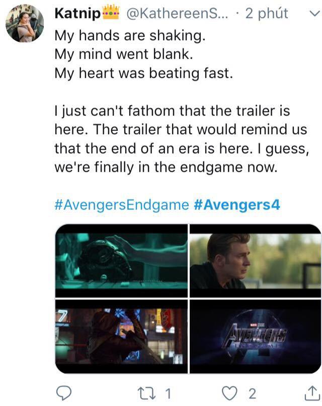 Cư dân mạng khóc thét khi chứng kiến các siêu anh hùng khốn khổ trong trailer Avengers: Endgame - Ảnh 9.