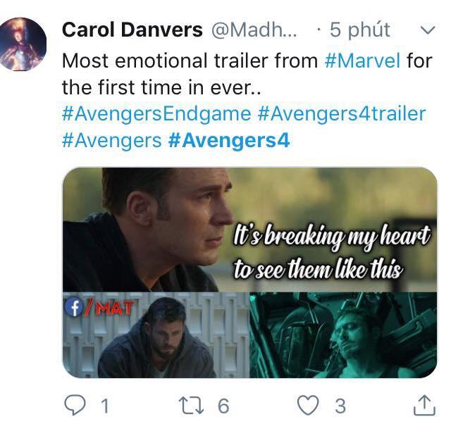 Cư dân mạng khóc thét khi chứng kiến các siêu anh hùng khốn khổ trong trailer Avengers: Endgame - Ảnh 6.