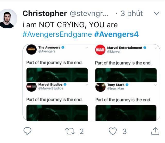 Cư dân mạng khóc thét khi chứng kiến các siêu anh hùng khốn khổ trong trailer Avengers: Endgame - Ảnh 8.