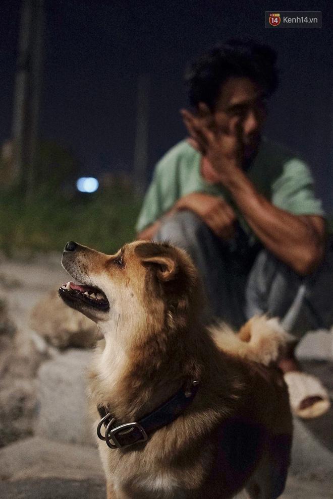 Điều kỳ diệu đã xuất hiện: Chú chó mù trở về bên anh đánh giày câm sau hơn nửa tháng mất tích - Ảnh 5.